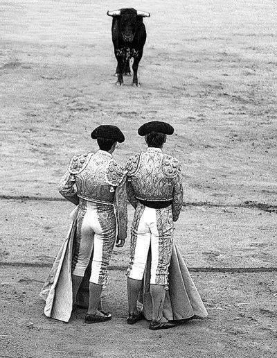 Bullfighting2