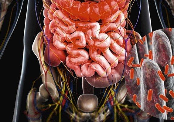 ¿Microbios en control de la mente?